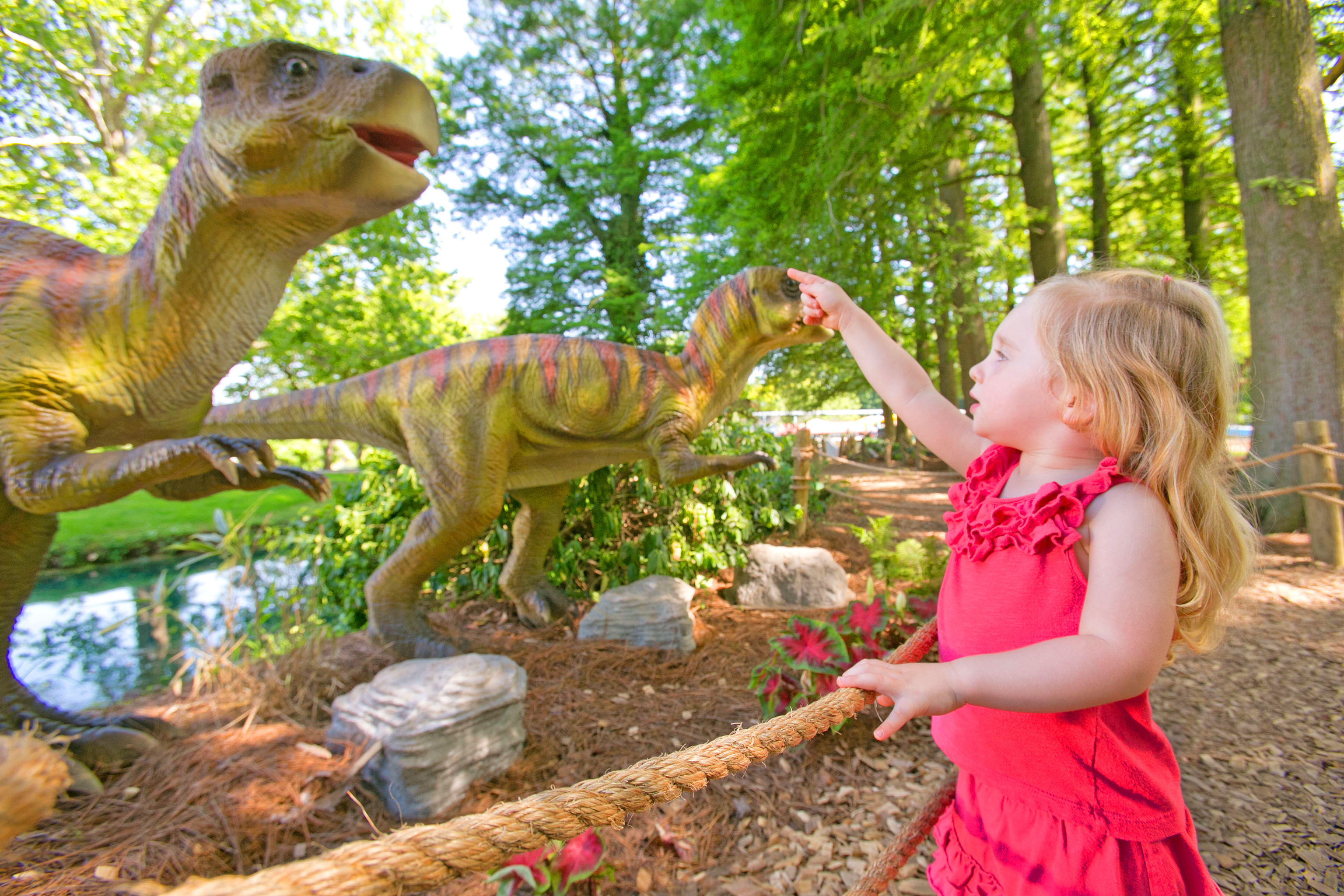 Young girl pointing at two animatronic dinosaur figures.